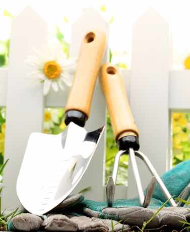 Gardens arent always for show. Here are 5 tips for planning a vegetable garden.