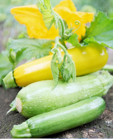 Summer is the best time of year for produce! If youre not big into vegetables and you want to...