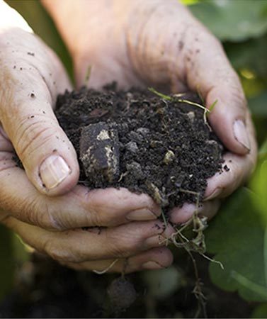 Composting is simple, but its not easy. Here are five steps to help you understand composting...