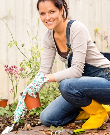 While the rest of us enter the autumn season with carefree attitudes, gardeners are hard at...
