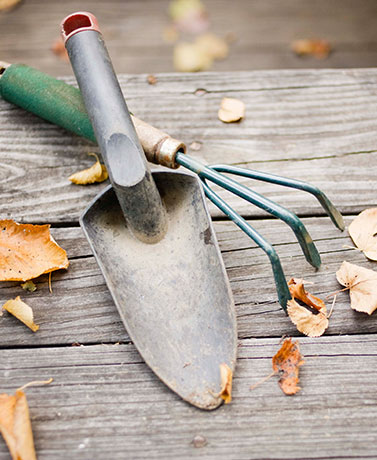 Making sure everything is in order helps your garden when the weather warms up. Here are 5 easy