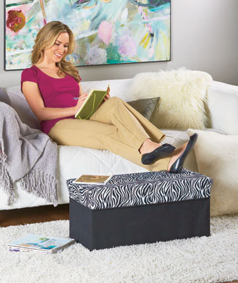 Decorative Storage Benches
