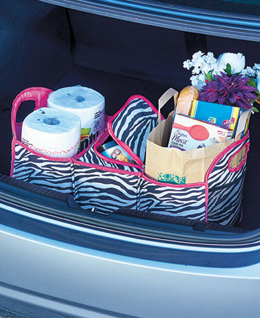 Divided Trunk Organizer with Insulated Compartment