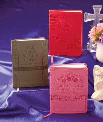 Bible Promise Books