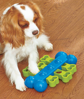 Seek-A-Treat™ Interactive Dog Puzzles
