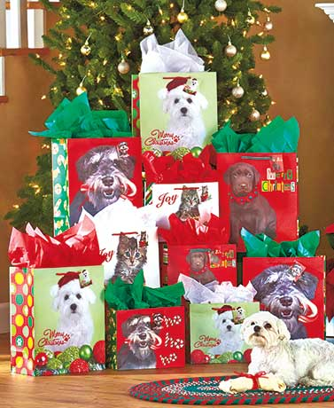 Furry Friends Gift Bag or Tissue Sets