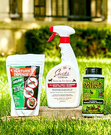 All-Natural Pest Solutions