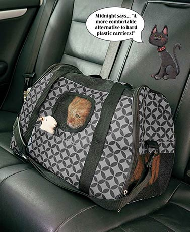 Soft-Sided Printed Pet Carriers