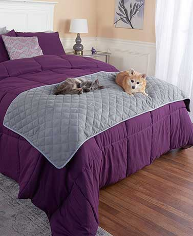 Quilted Pet Bed Scarves