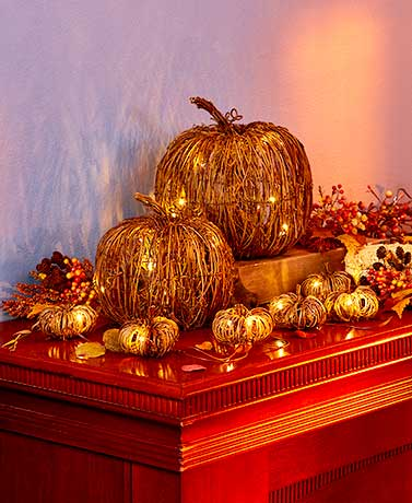 Lighted Fall Grapevine Collection
