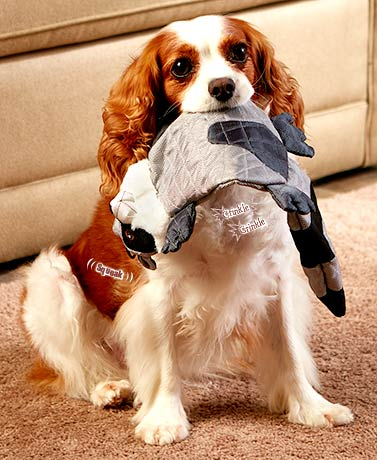 Durable Dog Toys
