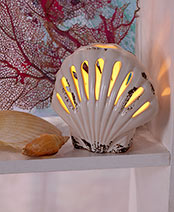 Seashell Accent Lamps