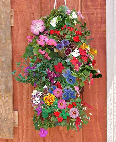 Vertical Garden and Flower Mat Combination