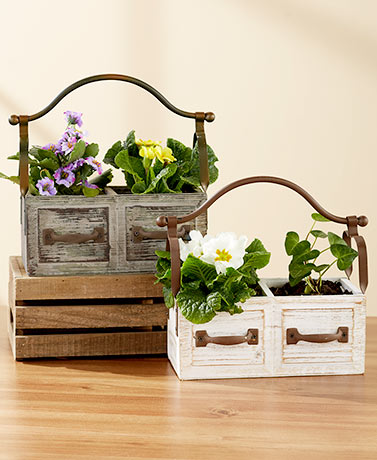 Planter Box with Iron Handle