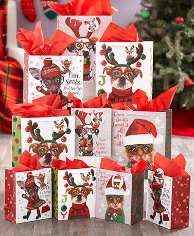 20-Pc. Festive Animal Bag Set