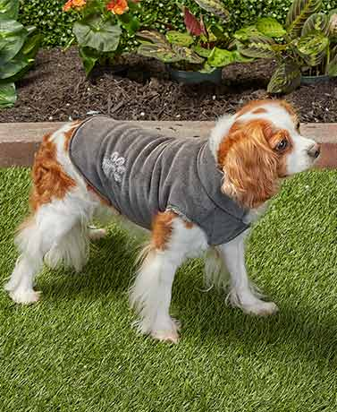 Corduroy Pet Jackets