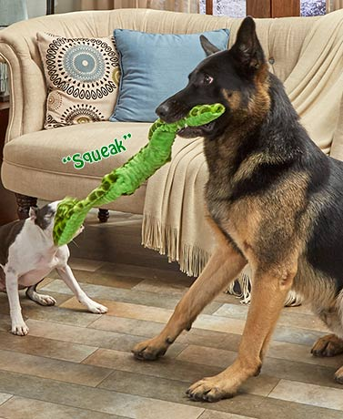 Stretch and Squeak Snake Dog Toys