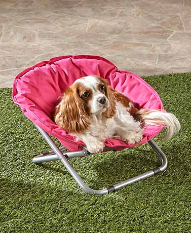 Foldable IndoorOutdoor Pet Beds