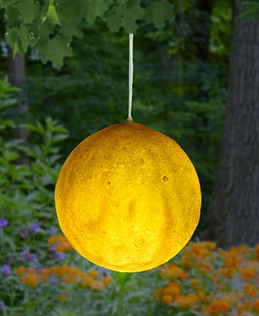 Hanging Solar Moon Light